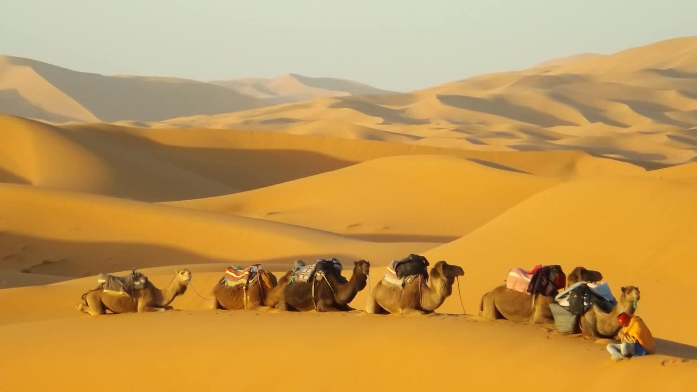 Customized trip to Morocco