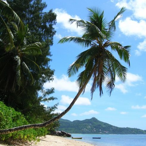 Seychelles fai da te | Guida all'organizzazione del viaggio