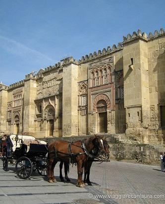 carrozza con cavalli cordoba