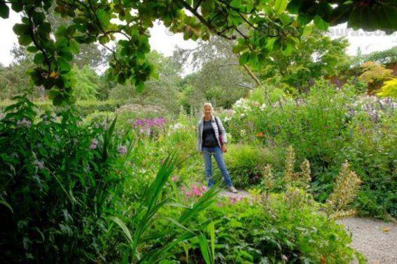mount usher gardens ashford ireland