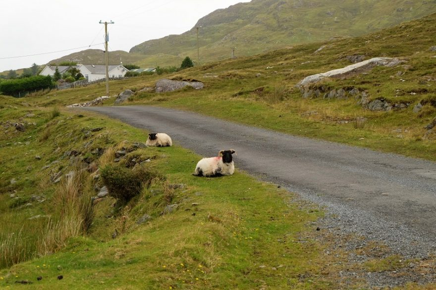 connemara irlanda tour