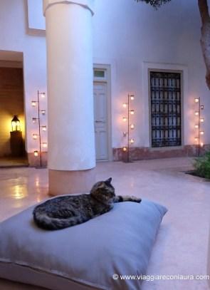 marrakech dove dormire - riad berbere