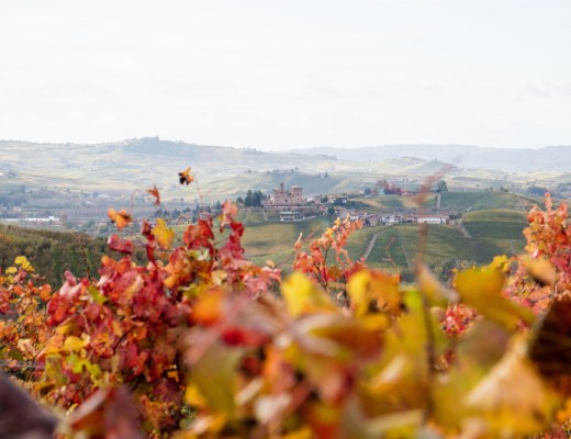 Langhe cosa vedere
