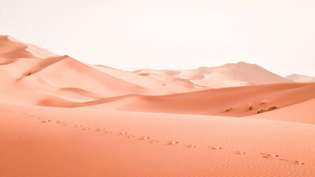 Mille e un Marocco, Letizia Gardin
