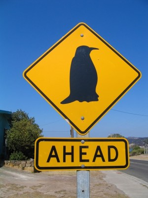 Australia - Kangaroo Island - Penneshaw - Cartello - Segnali stradali