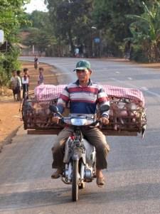 Cambogia - Kompong Kham - Mezzi di trasporto