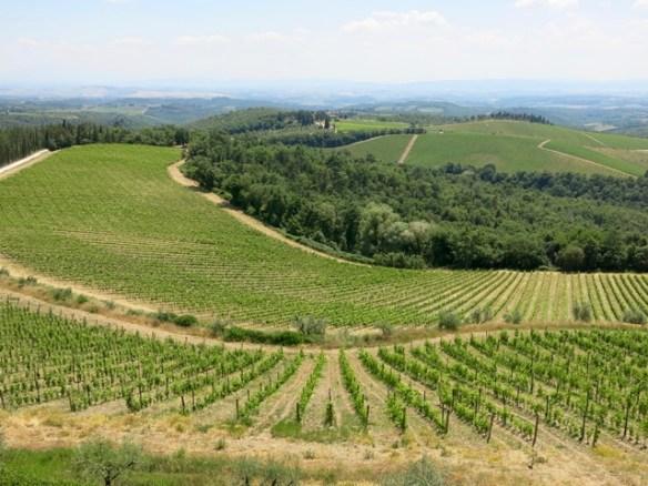 Dentro il vino Gaiole in Chianti