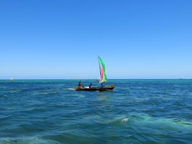 Madagascar Mare