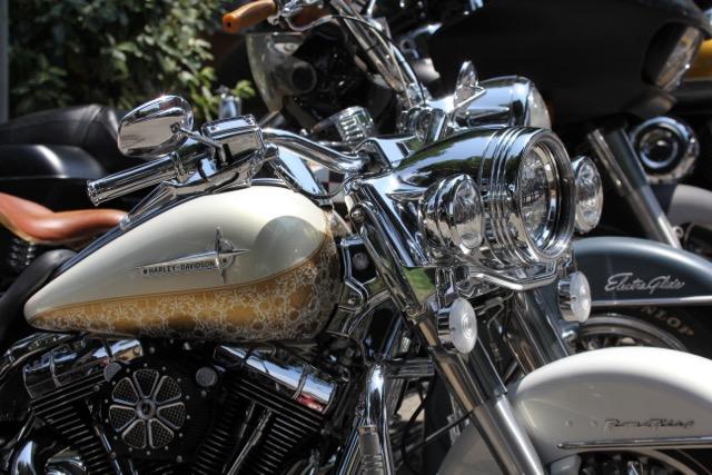 Biker Bikini Benefit 2018 - Harley Davidson