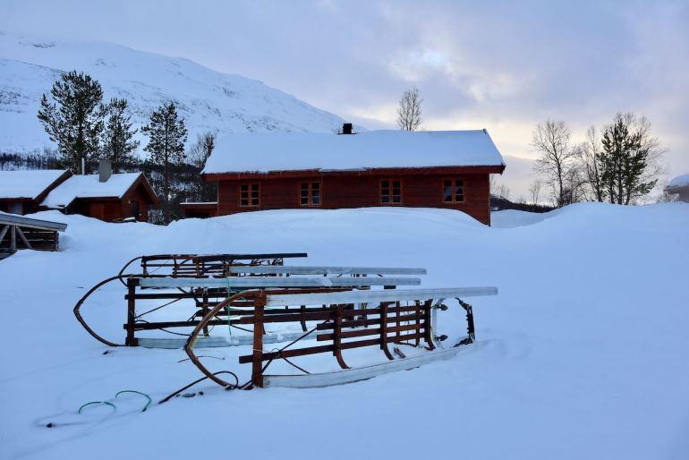 Dog sledding Norvegia