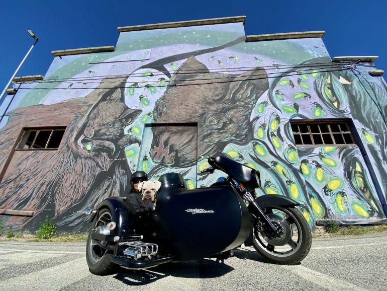 Aielli murales