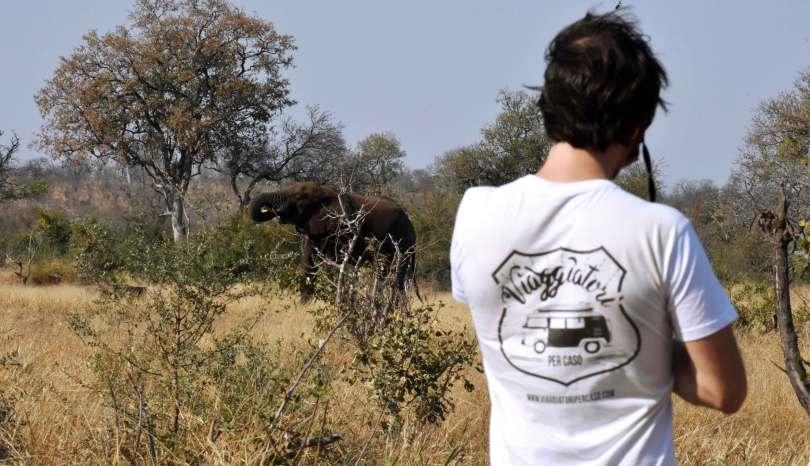 Il Sudafrica in agosto: 5 motivi per andarci