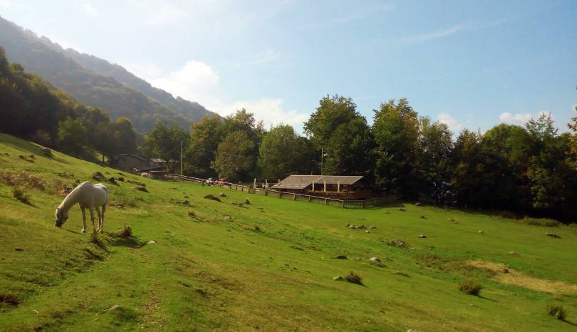Dove mangiare sul lago di Como (Italia): Alpe di Lemna