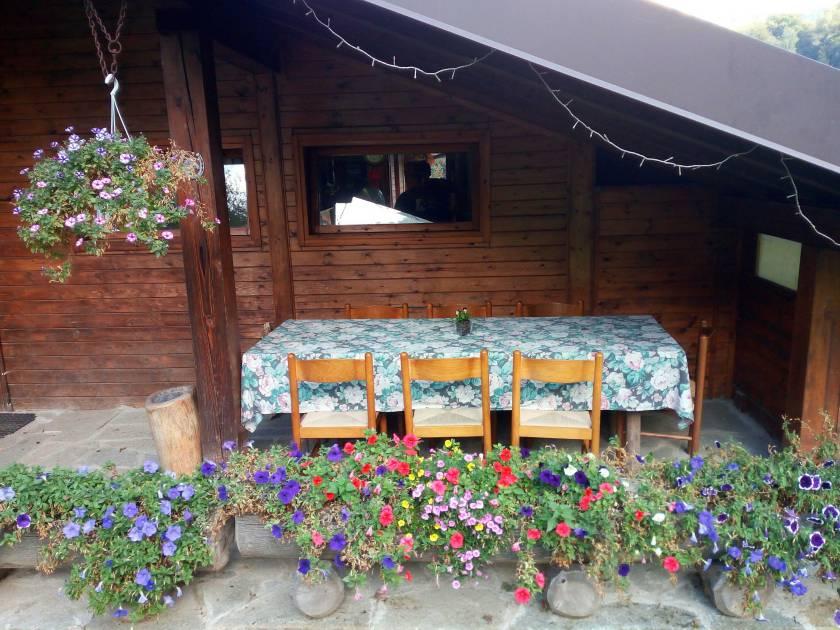 alpe-lemna-lago-como-fiori-e-vedre