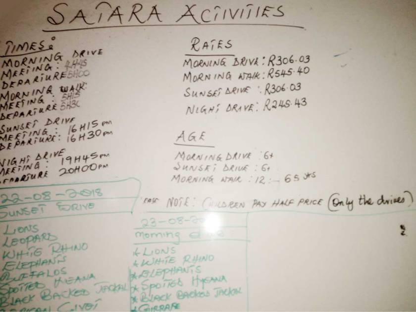 satara-game-drives-prezzi-e-orari