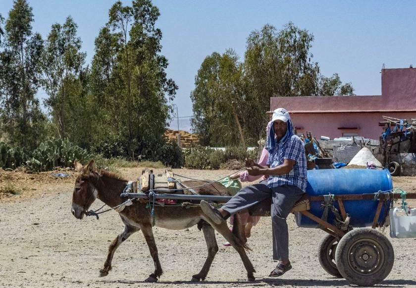pedoni e carretti in Marocco