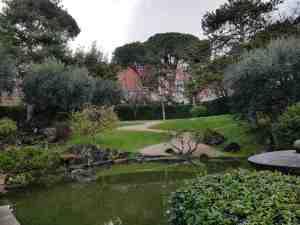 Il laghetto e il sentiero del giardino dell'istituto giapponese di roma