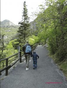 le-grotte-di-toirano-meraviglia-della-natura-foto-4