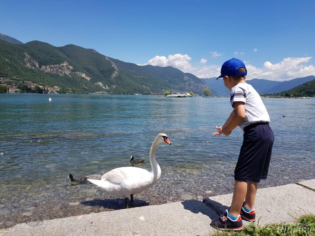 Laghi in Italia: per una gita o un weekend in famiglia - Lago d'Iseo, Paratico