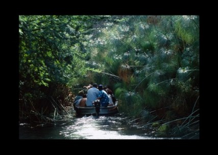papiro visita guidata fiume ciane siracusa