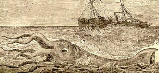 Il terribile incontro con un calamaro gigante