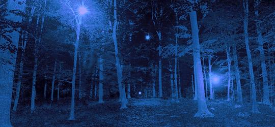 UFO nella foresta di Rendlesham