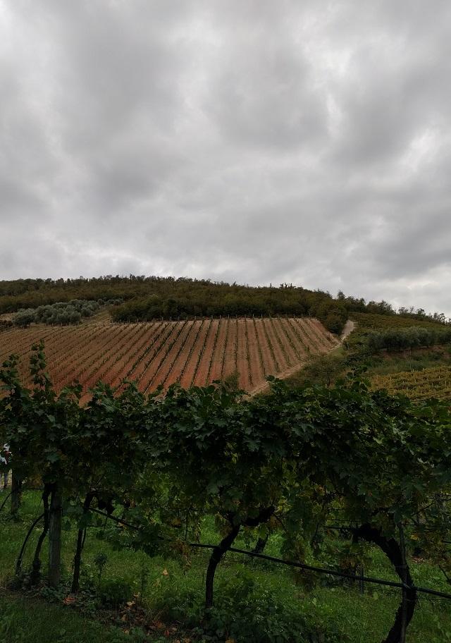 trekking-buso-briganti-colli-euganei-autunno