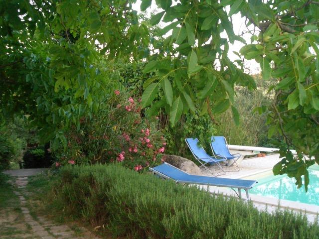 bb-ecologico-roma-con-piscina