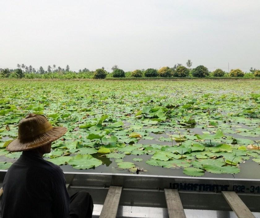 turismo sostenibile fuori bangkok
