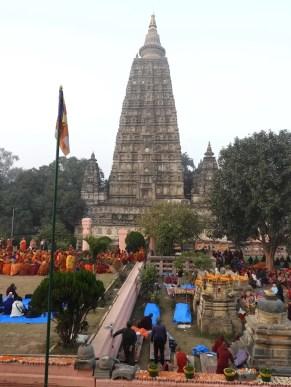 2020 Buddha trai303 lav