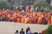 2020 Buddha trai304 lav