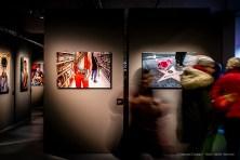 Steve-McCarry-Animals-Mudec-Photo-Milano-2018-©-Renato-Corpaci-16