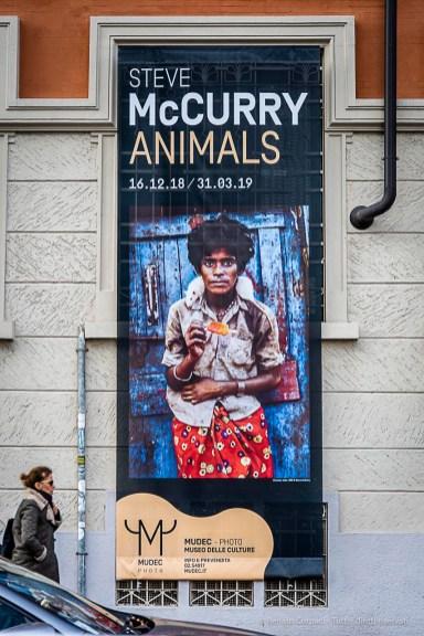 Steve-McCarry-Animals-Mudec-Photo-Milano-2018-©-Renato-Corpaci-18