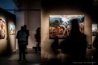 Steve-McCarry-Animals-Mudec-Photo-Milano-2018-©-Renato-Corpaci-5