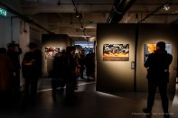 Steve-McCarry-Animals-Mudec-Photo-Milano-2018-©-Renato-Corpaci-8