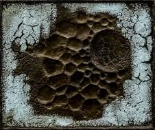 Franco Cardinali_Fossile lunaire_1967_olio caseina e sabbia su tela_cm 48x57.jpg