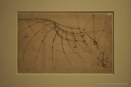 Leonardo-da-Vinci-Milano-2015-©-Renato-Corpaci-1