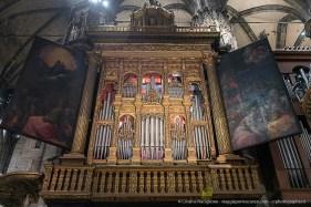 Organo-del-Duomo-di-Milano-2019-©-Cristina-Risciglione-24