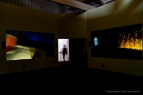 Whether-Line-Fondazione-Prada-2019-©-Renato-Corpaci-1