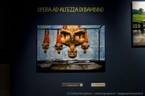 Steve-McCurry-Icons-Pavia-©-Cristina-Risciglione-6