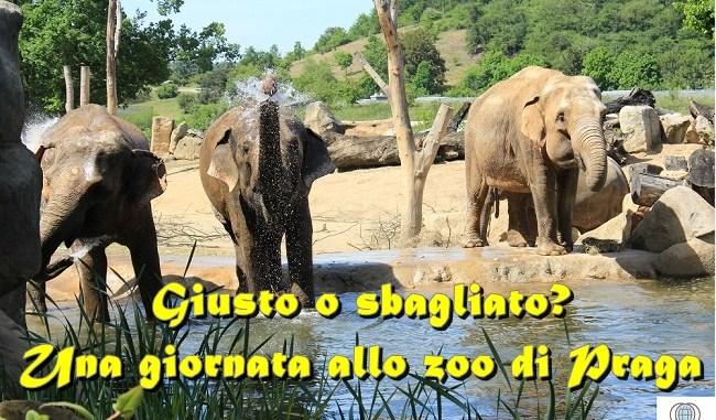 lo Zoo di Praga