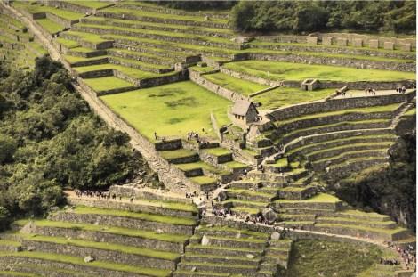 Peru 2013 Machu Pichu4