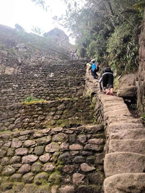 Peru 2013_ machu Pichu