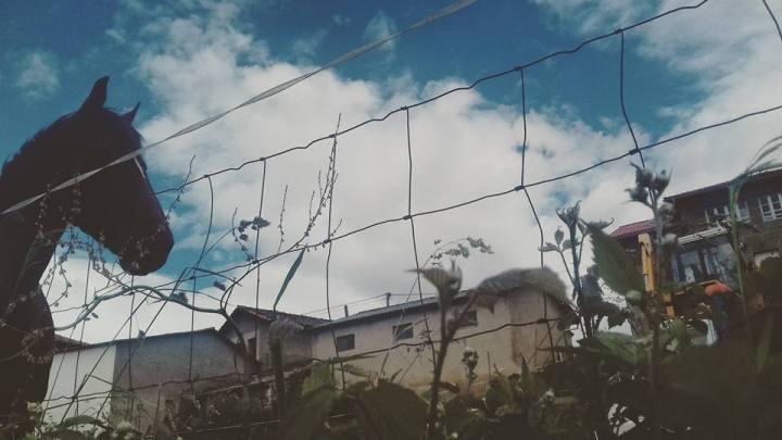 camino-de-santiago-camino-primitivo-asturias-sonsoles-lozano-5
