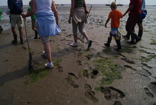 gente dejando huella en el fondo marino durante wadlopen en la isla de Schiermonnikoog en Holanda