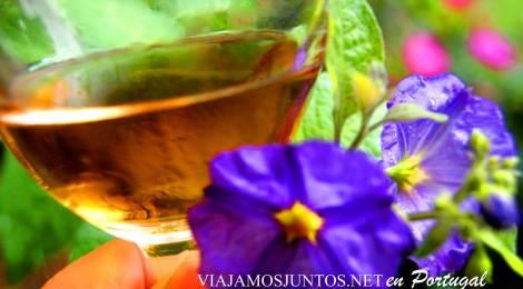 Una copa de moscatel de la bodega José María da Fonseca, Azeitao, Portugal
