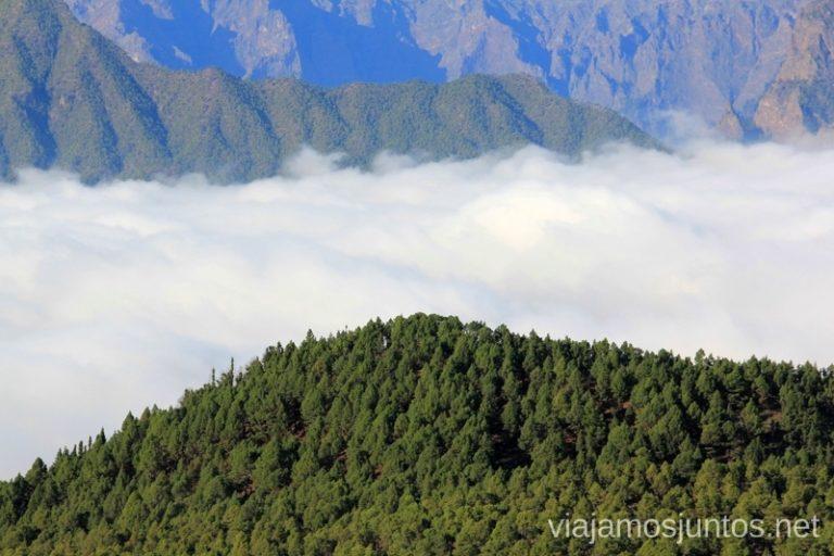 Mar de nubes con la Caldera de Taburiente de fondo desde el mirador el Jable Que hacer en la Palma, 4 actividades muy top