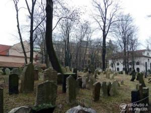 Antiguo-Cementerio-Judío-04