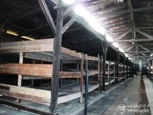 Auschwitz-025