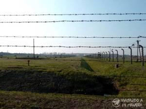 Auschwitz-07